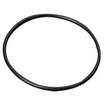 Canister Lid O-Ring (Promo)